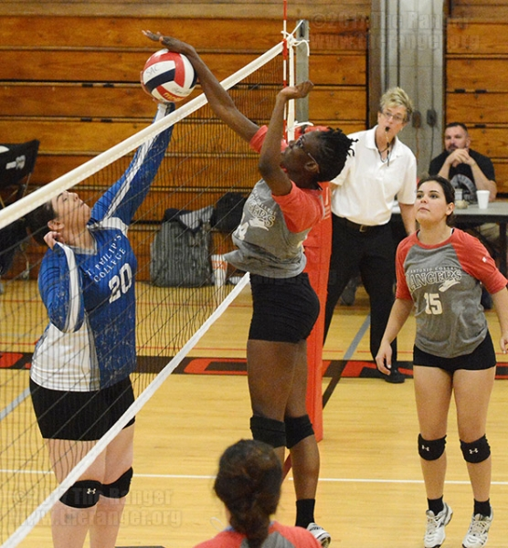 Women's Volleyball Game, March 9, 2017.