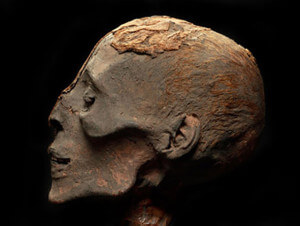 Mummies of The World, The Exhibit at the Witte Museum  Courtesy
