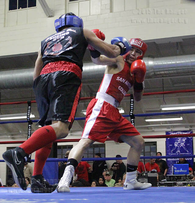 Golden Gloves Fitness Vaughan: Solid Gold Experience At Golden Gloves