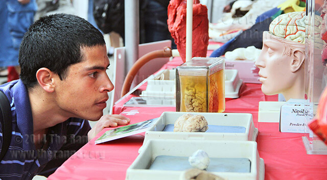 Biology freshman Arnold Bosch stares at the left side of a human brain floating in formaldehyde at a biology and anatomy table sponsored by the biology program Wednesday in the mall during STEM-ulate. STEM-ulate was created to promote science, technology, engineering and math as possible career fields and to increase enrollment in the courses the college offers in the fields. See story at theranger.org. Photo by Riley Stephens