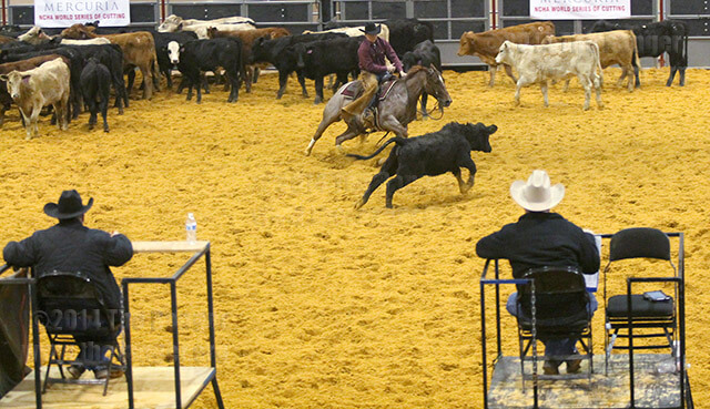"Professional rider Brent Gubbels rides Little Bow Peepto in the Mercuia World Series Open. Cattle cutting is the practice of one rider ""cutting"" or separating a cow from the herd then keeping the cow from re-entering the herd for 2 1/2 minutes. Photo by Melissa Perreault"