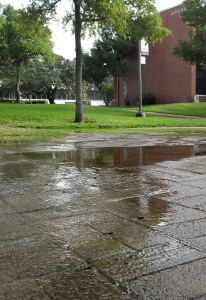 Runoff from sprinklers north of Gonzales drains to Candler Friday. The walkways were flooded.