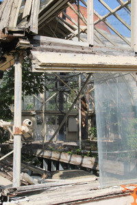 The greenhouse on the west side of the grounds of the Koehler Cultural Center, 310 W. Ashby  Photo by Riley Stephens