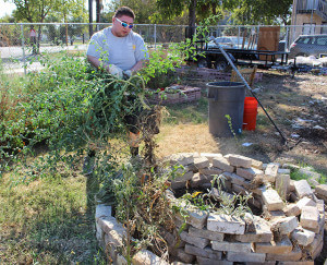 Brian Perez removes a tomato plant to replant it Oct. 17 at Garden Day at EcoCentro. Photo by TiffanyAnne Bermea