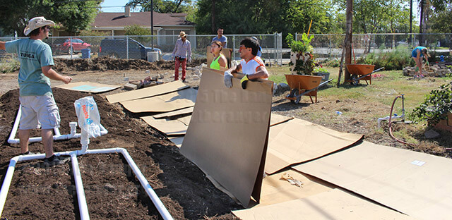 Environmental science sophomore Jess Mayes shows volunteers on where to lay the cardboard. The carboard is used as a bed for the soil so the soil lies evenly on the ground. EcoCentro hosted Garden Day on Oct. 17 for volunteers to rebuild the community garden at 1802 N. Main. Photo by TiffanyAnne Bermea