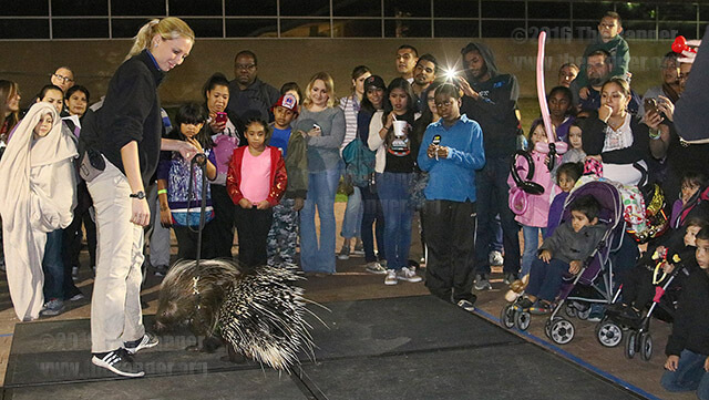 The third annual SACtacular event Nov. 6 in the mall area. Booths, games and  shows were set up throughout the evening.  File